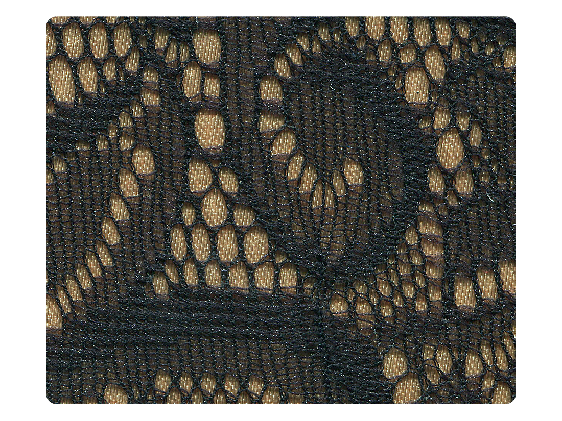 258 Flesh & Black Lace Fabric Swatch