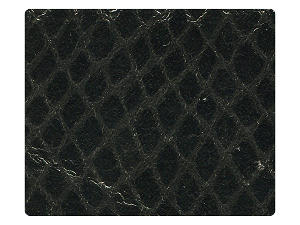 224 Snake Grey Fabric Swatch